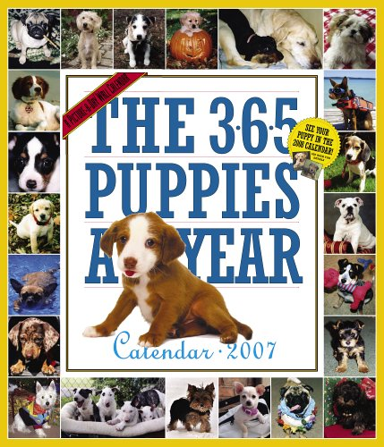 The 365 Puppies-a-year A Picutre-A-Day 2007 Calendar (カレンダー)