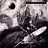 Album «Secrets of the Beehive»by David Sylvian