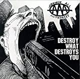 Album «Destroy What Destroys You»by Against All Authority