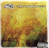 Album «Grassroots»by 311