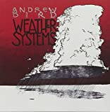 Album «Weather Systems»by Andrew Bird