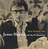 Album «While the Music Lasts»by Jesse Harris