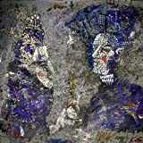 Album «Catch for Us the Foxes»by Mewithoutyou