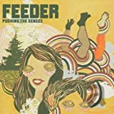 Album «Pushing the Senses»by Feeder