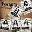 Newest effort from Sweden's bombastic Evergrey