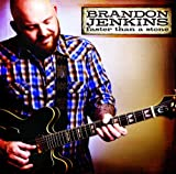Album «Faster Than a Stone»by Brandon Jenkins
