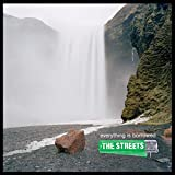 Album «Everything Is Borrowed»by The Streets