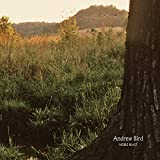 Album «Noble Beast»by Andrew Bird