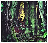 Album «Manafon»by David Sylvian
