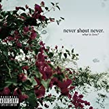 Album «What Is Love»by Never Shout Never