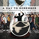 Album «What Separates Me From You»by A Day To Remember