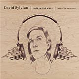 Album «Died in the Wool»by David Sylvian