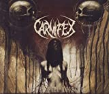 Album «Until I Feel Nothing»by Carnifex