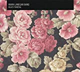 Album «Blues Funeral»by Mark Lanegan
